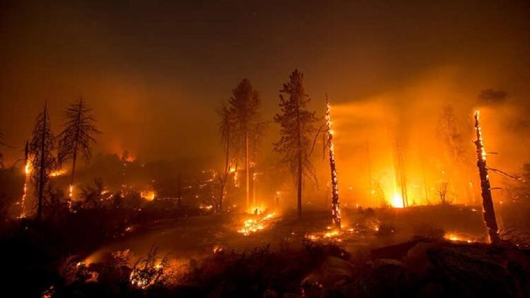 استنشاق دخان حرائق الغابات محفوف بالسكتة القلبية - أردوغان: سنحشد كافة طاقات الدولة للسيطرة على حرائق الغابات وإخمادها