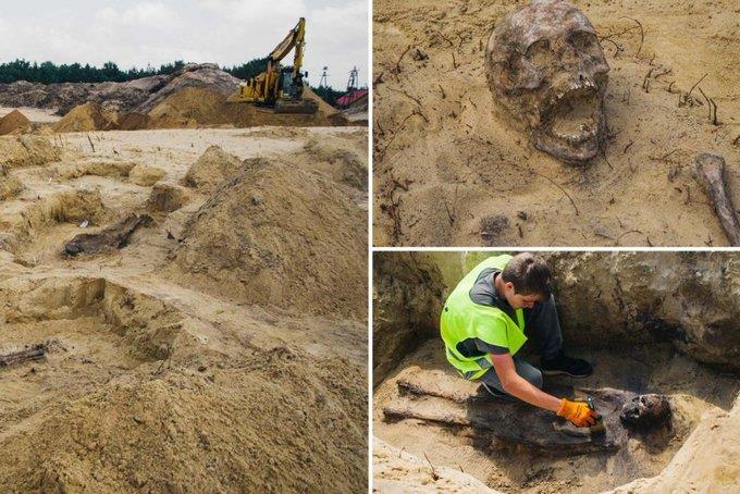 72b4e609 50da 4b7d 8196 b32eedc309ce - اكتشاف مقبرة جماعية للأطفال حيّرت العلماء في بولندا
