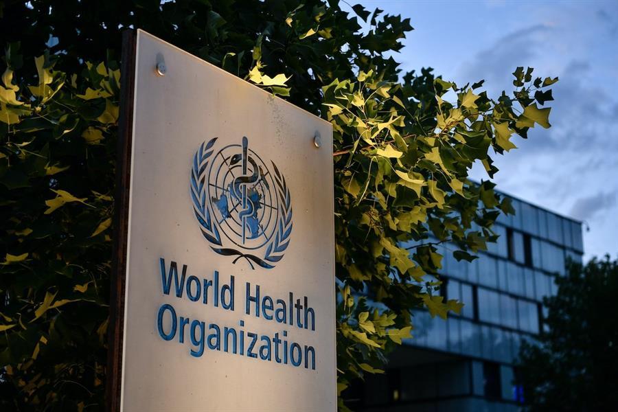 """ce3f6c1c 0a4b 4bcc 82c1 73b9a94e1b66 - """"الصحة العالمية"""" توضح حقيقة اندماج """"كورونا"""" مع إنفلونزا الطيور.. وهل ينقل مُتلقو اللقاح الفيروس"""