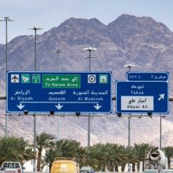 عبدالله المضف يسأل «الداخلية» و«التجارة» عن عدد العمالة السائبة في الكويت.   #العبدلي_نيوز