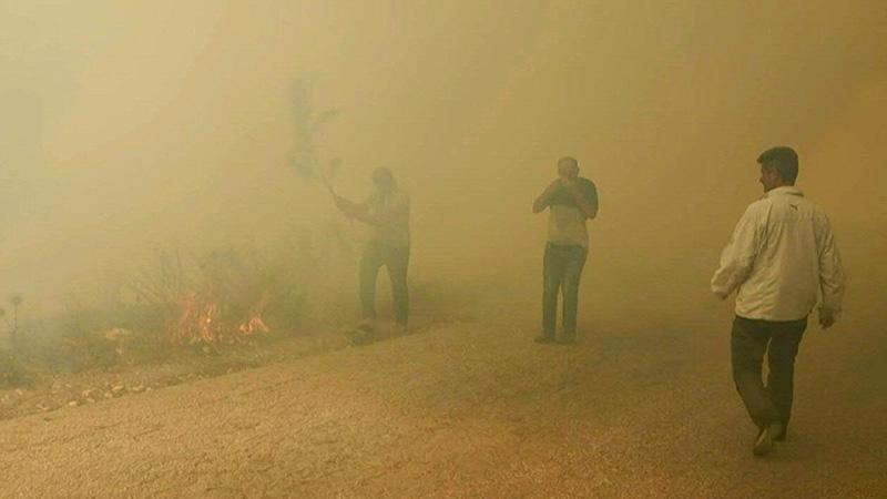 ٢٠٢١٠٧٣٠ ١٦٢٢٢٥ - مصرع فتى لبناني أثناء مشاركته في إخماد حرائق ضخمة.   #العبدلي_نيوز