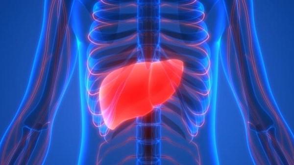 ٢٠٢١٠٨٠١ ١٧٣٩٣٩ - #دراسة_أمريكية: العلاج بموجات الراديو آمن لمرضى سرطان الكبد.  #العبدلي_نيوز