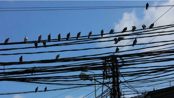 لبنان - #لبنان: إعادة تشغيل شبكة #الكهرباء بشكل جزئي بعد انقطاعها بشكل كامل                   #العبدلي_نيوز
