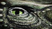 """العثور على """"اللص العملاق"""" آخر ديناصور مفترس على كوكبنا"""