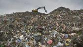 شركة هولندية تنجح في صنع عبوات من البلاستيك النباتي يمكنها أن تتحلل في غضون عام واحد