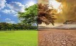 #الاحتباس_الحراري سيحدث أضرارا جسيمة في الطبيعة في #ألمانيا.   #العبدلي_نيوز