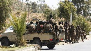 #إثيوبيا: المتمردون يشنون هجوما عنيفا على قوات الحكومة في إقليم #تيغراي ويستولون على بلدات عدة.  #العبدلي_نيوز