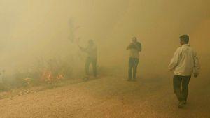 مصرع فتى لبناني أثناء مشاركته في إخماد حرائق ضخمة.   #العبدلي_نيوز