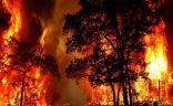السيطرة على حريق غابات في جنوب إسبانيا بعد اشتعاله لمدة 6 أيام.  #العبدلي_نيوز