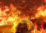 اشتبهوا في إشعاله الحرائق بالغابات .. قتل شاب حرقًا في الجزائر