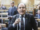 يسعون بالأرض فساداً.. تصريح نائب عن فناني مصر يثير أزمة
