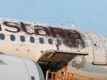 سرب من #النحل يهاجم طائرتين ويؤخر إقلاعهما في مطار بالهند         #العبدلي_نيوز