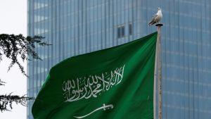 السعودية.. تحذير من موجة شديدة البرودة محفزة للإنفلونزا