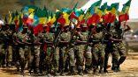 """إثيوبيا تعلن عن """"خط أحمر"""" وتؤكد جاهزية قواتها للدفاع عن البلاد"""
